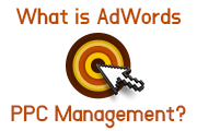 What is AdWords PPC Management